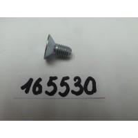 165530 Vijs met platte kop